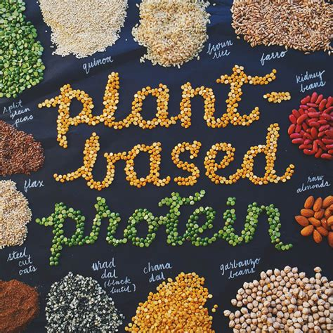 r proteins plants more plant proteins can reduce the risk of diabetes
