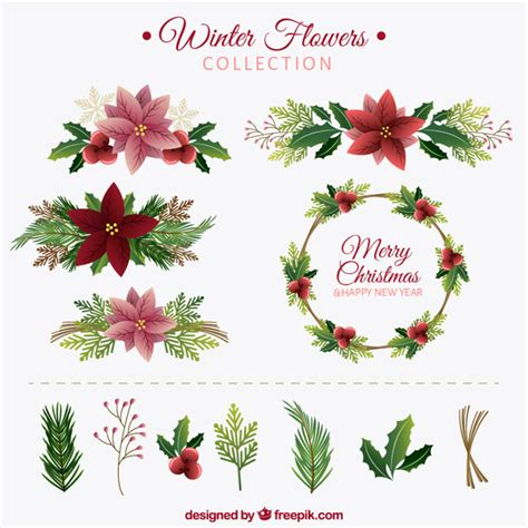 Flower Collection winter flower collection vector free