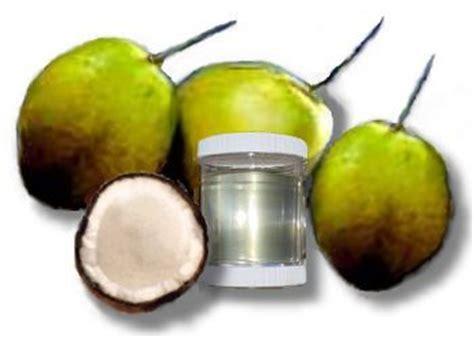 Coconut Vco Minyak Pelarut perangi penyakit degenaratif dengan vco tanaman obat