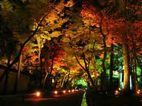 Led Landscape Tree Lights 11 Stunning Photos Of Landscape Lighting Pegasus Lighting