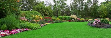 lawn maintenance commercial residential lezzer