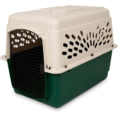 puppy crate ruff maxx plastic crate kennel 6 sizes at hayneedle