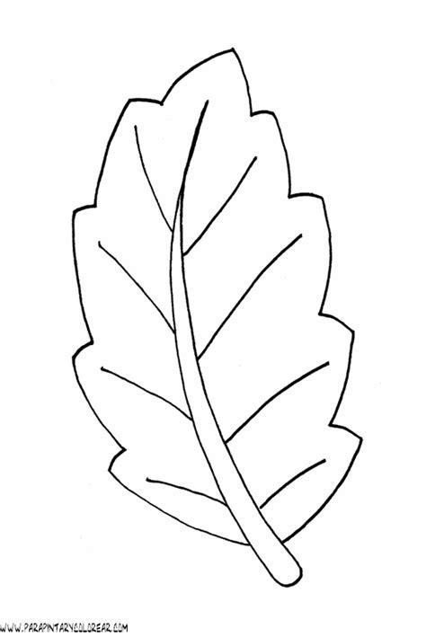 imagenes para colorear hojas dibujos para colorear de hojas de arboles 010