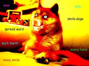 smile doge doge know your meme