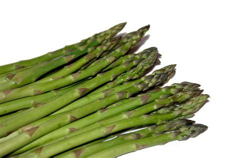 imagenes de esparragos verdes image gallery esparragos
