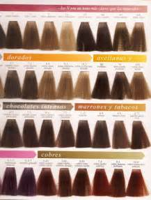 color marron m 225 s de 1000 ideas sobre pelo de color chocolate marr 243 n en
