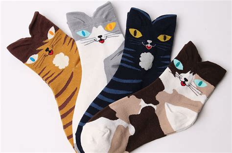 tying sock around cat is 17 pairs of cat themed socks you need right meow