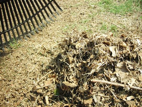 types of mulch for gardens covering compost types of mulch letters from the loft