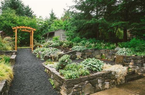 certified backyard habitat nw portland audubon certified backyard habitat tfgs