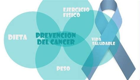 alimentos contra el cancer de prostata alimentos que ayudan a prevenir el c 225 ncer de pr 243 stata
