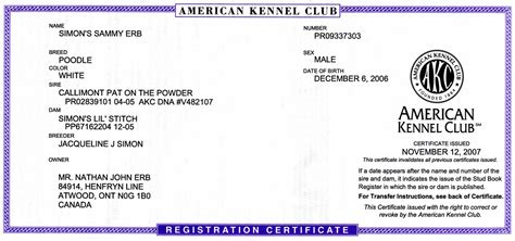 akc registered dogs akc certificate breeds picture