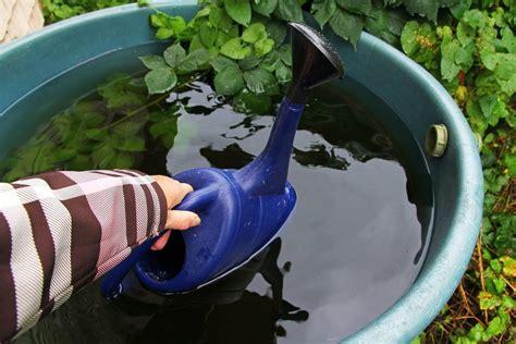 Regenwassernutzung Garten by Regenwassernutzung F 252 R Garten Und Haushalt 183 Ratgeber Haus Garten