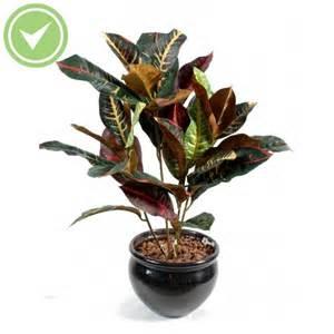 fausse plante verte pas cher