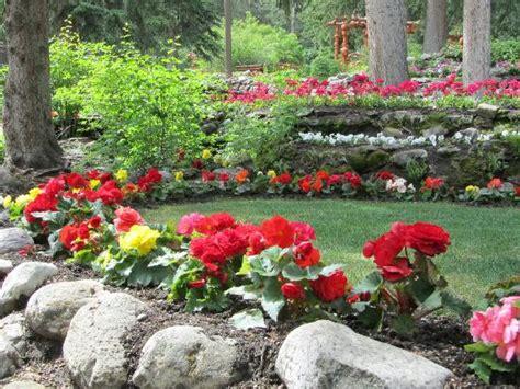 beautiful flowers in cascade garden picture of cascade