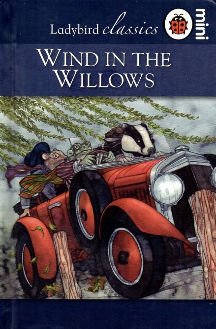 ladybird classics the wind the wind in the willows ladybird book classic series gloss hardback 2008