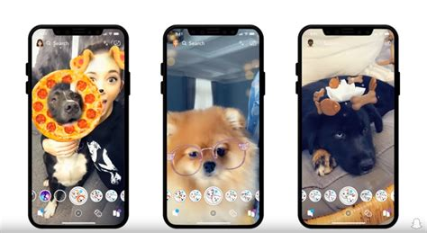 snapchat dog filters    theyre doggone