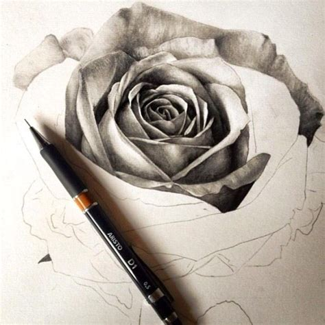 how to tattoo a realistic rose black and white sketch pencil pen drawing