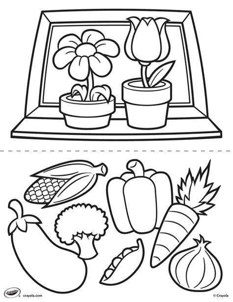 crayola coloring pages flowers first pages flowers and veggies crayola com au
