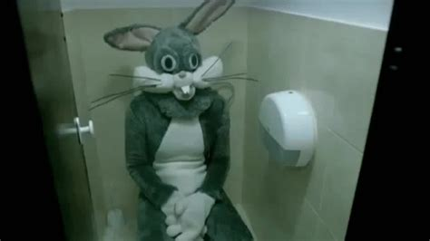 rabbit bathroom gif ads fun creepy bunny in the toilet on make a gif