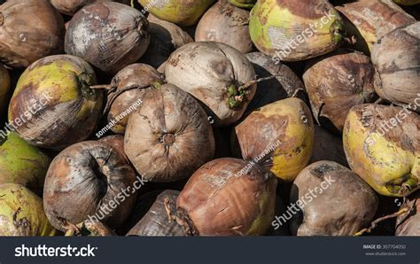 coconut in food coconut food stock photo 307704050