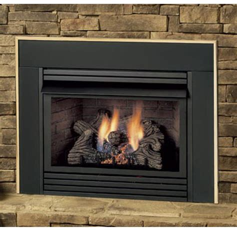 Fireplace Insert Gas Logs propane gas log fireplace inserts fireplaces