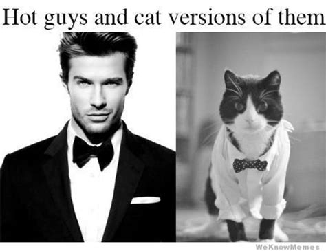 Hot Guy Meme - hot guys and cat versions of them weknowmemes