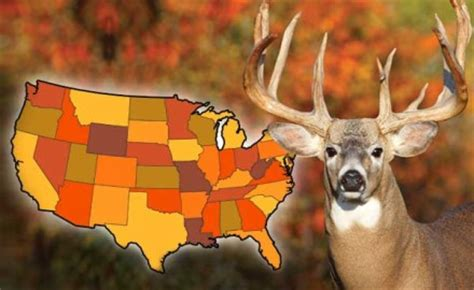 gf forecast our best places to hunt deer game fish best big buck states for 2014 arkansas game fish
