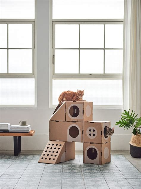 designboom cat furniture modular cardboard cat furniture is an ever changing playground