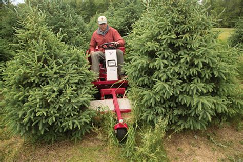 catchy collections of christmas tree farm equipment