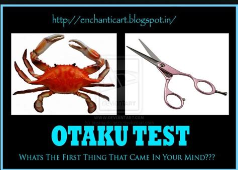 Crab Scissors Meme - i think of cancer from fairy tail fairy tail pinterest