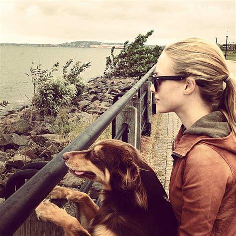 amanda seyfried instagram amanda seyfried and her dog finn pictures on instagram