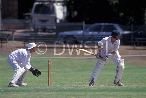 swing cricket a royalty free image of cricket game in progress