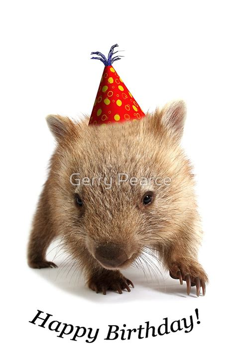 Wall Stickers Writing quot a wombat happy birthday quot greeting cards by gerry pearce