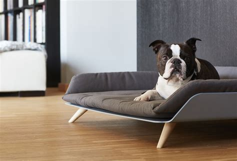 modern dog beds letto daybed modern dog bed 187 gadget flow