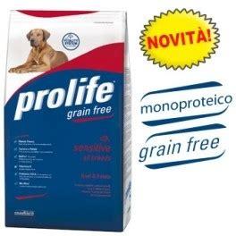 alimenti secchi per cani vantaggi e svantaggi degli alimenti secchi per cani grain