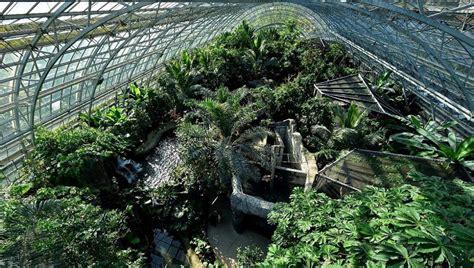 plantes et jardins serres quot mille et une orchid 233 es quot au jardin des plantes 224 exposition 2016 site officiel