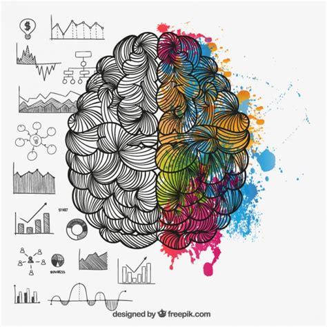 doodle brain brain hemispheres in doodle style vector free