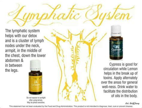 Essential Oils For Lymph Detox by Lymphatic System Essential Oils