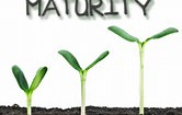 Image result for maturity