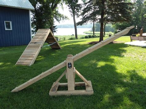agility equipment agility equipment plans breeds picture