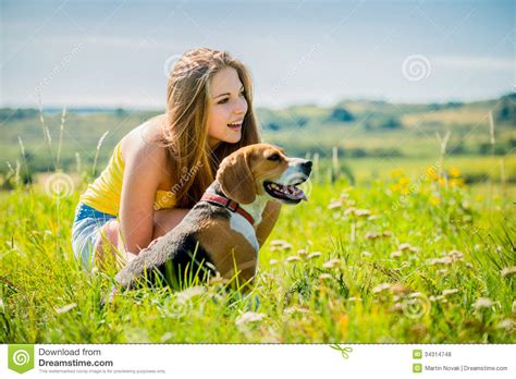 Naura Pet by With Stock Photo Image Of Beagle
