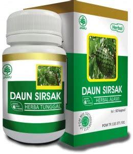 Obat Herbal Obat Herbal Hiu Daun Sirsak Obat Kanker Tumor Aa126 kapsul daun sirsak hiu mengatasi berbagai penyakit kanker ramuan obat tanaman herbal