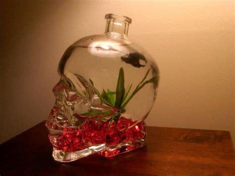 Pet Tray Salad 750ml really awesome skull fish bowl cool stuff