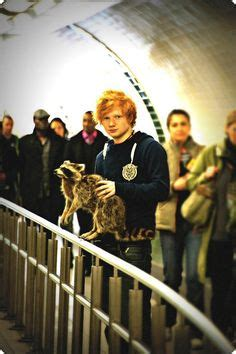 ed sheeran i m not the only one mp3 download 1000 images about ed sheeran on pinterest ed sheeran