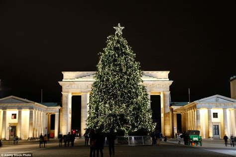 christmas tree gate mailonline travel reveals the best trees in the world daily mail