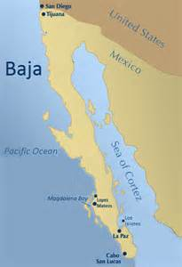 baja california peninsula map baja mexico kayak whales responsible adventure