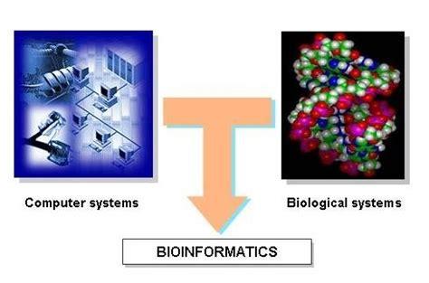contoh bio riset posisi bioinformatika dalam dialetika majalah 1000guru