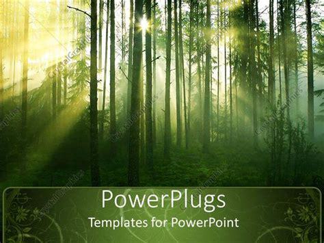 powerpoint template tree with leaves in forest with sun