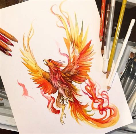 phoenix tattoo design stencil