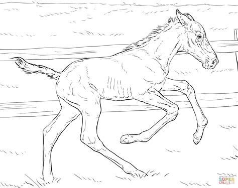 coloring pages of bucking horses 89 coloring pages of bucking horses bucking horse